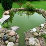 Den Teich das ganze Jahr über richtig pflegen